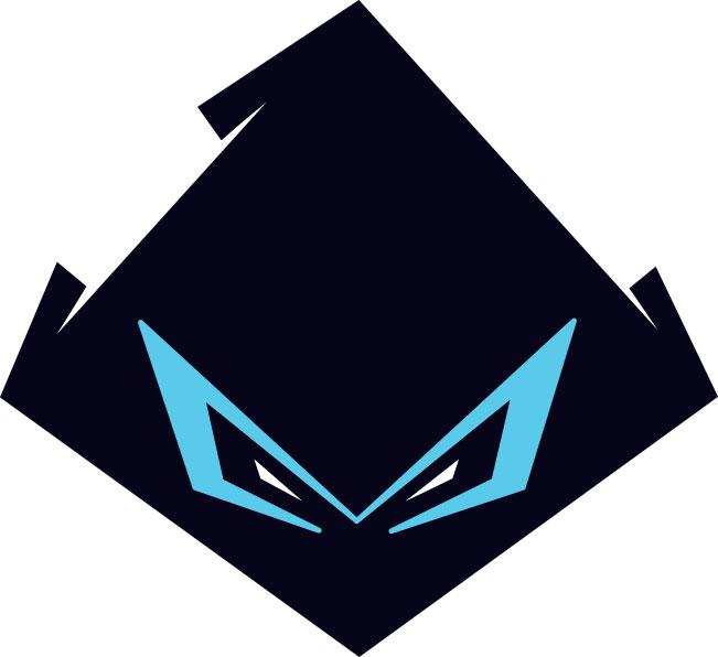 Ninja-Head